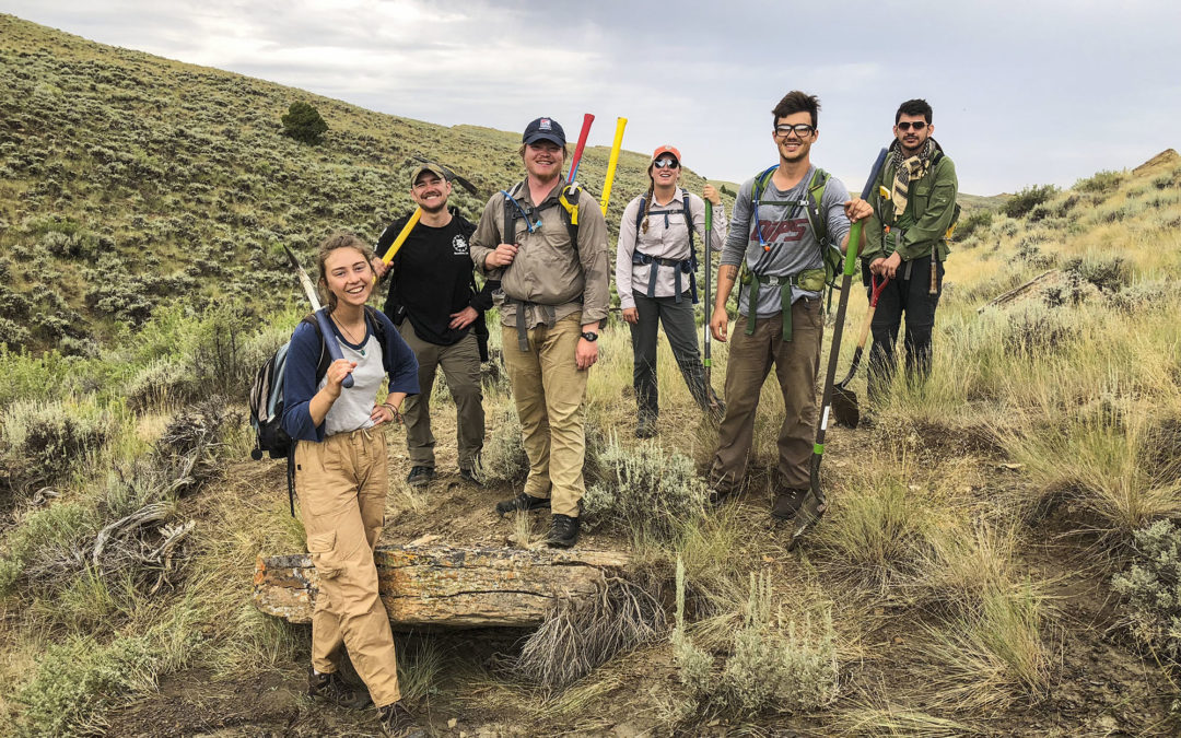 Wyoming 2018-19 Project Update