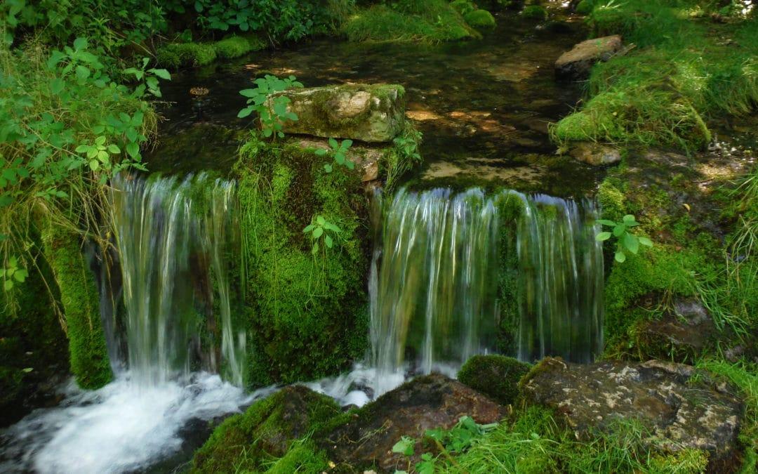 Wisconsin Freshwater Springs