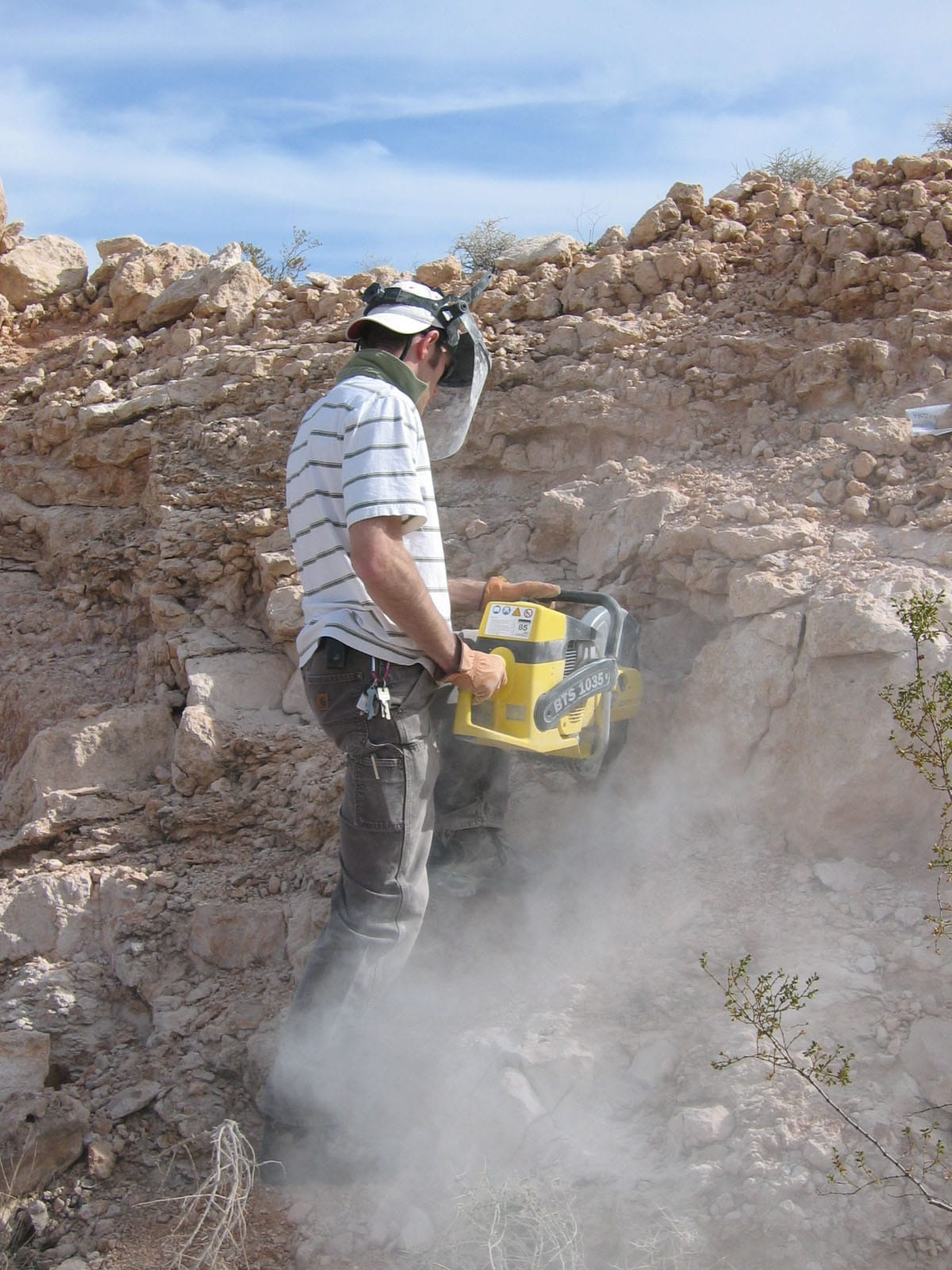 Paleoenvironmental analysis of ancient soil horizons for Soil and geology