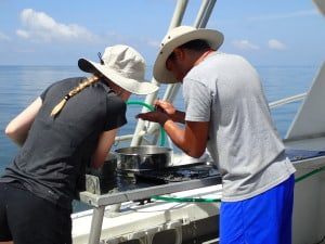Fig 2 Students processing live-dead samples in the northern Gulf of Mexico